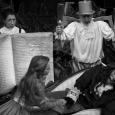 """Spektakl dla dzieci """"Piękna i bestia"""" w reżyserii Leny Szurmiej. Spektakl Teatru Żydowskiego w Warszawie"""